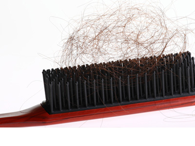 Brush containing brown hair